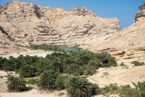 Lush wadi nestled in the mountains
